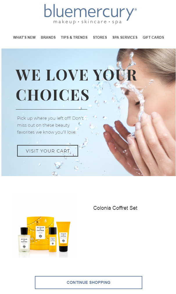 Tenth Abandoned Cart Email Examples to Win Customers